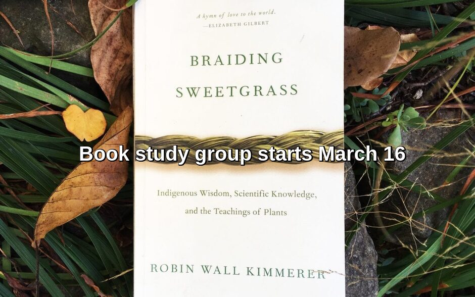 Book study Braiding Sweetgrass