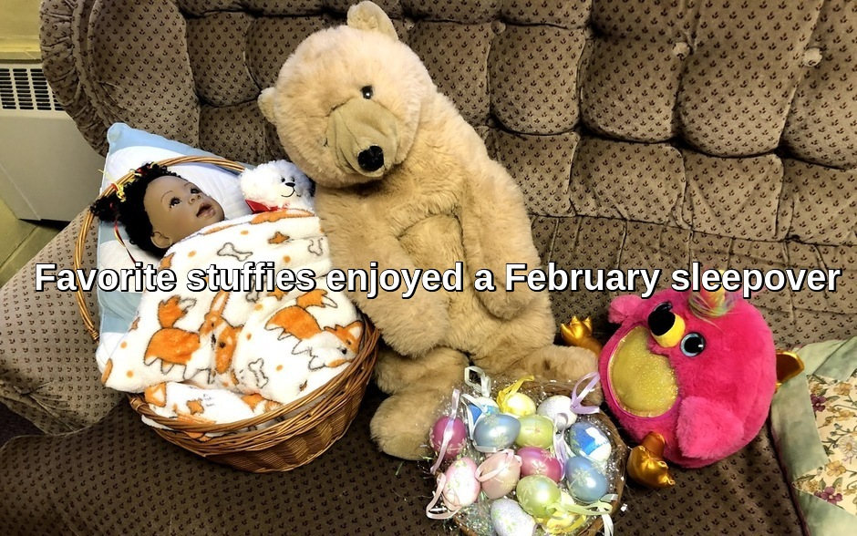 "Favorite dolls and stuffed animals ""slept over"" at the UUCNC meetinghouse in February."